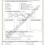 7Th Grade Exam   Esl Worksheetpsko | Primary 1 Chinese Worksheets Printables