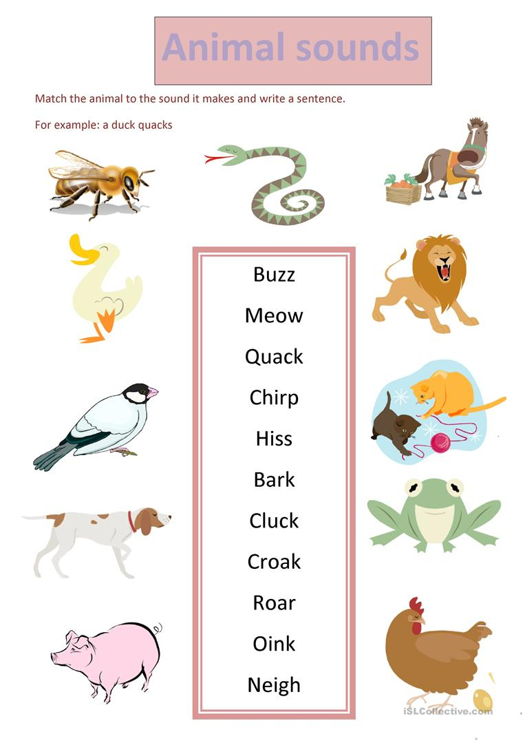 Animal Sounds Worksheet - Free Esl Printable Worksheets Madeteachers | Animal Sounds Printable Worksheets