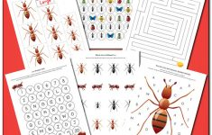 Ant Printables Pack {Insect Printables} – Gift Of Curiosity | Ant Worksheets Printables