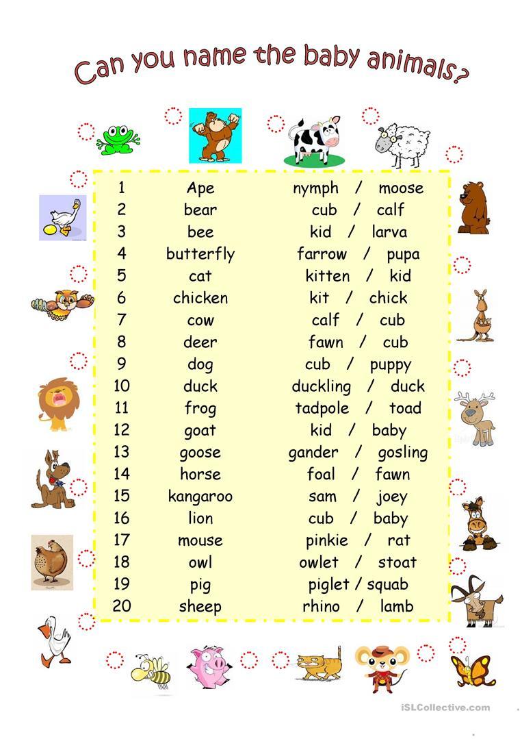Baby Animals Worksheet - Free Esl Printable Worksheets Madeteachers | Owl Babies Printable Worksheets