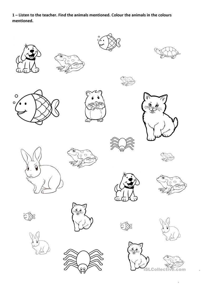 Find, Colour And Count Pets Worksheet - Free Esl Printable | Pets Worksheets Printables
