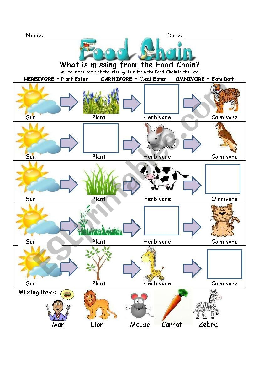 Food Chain Worksheet - Esl Worksheetslvrwolf | Food Chain Printable Worksheets