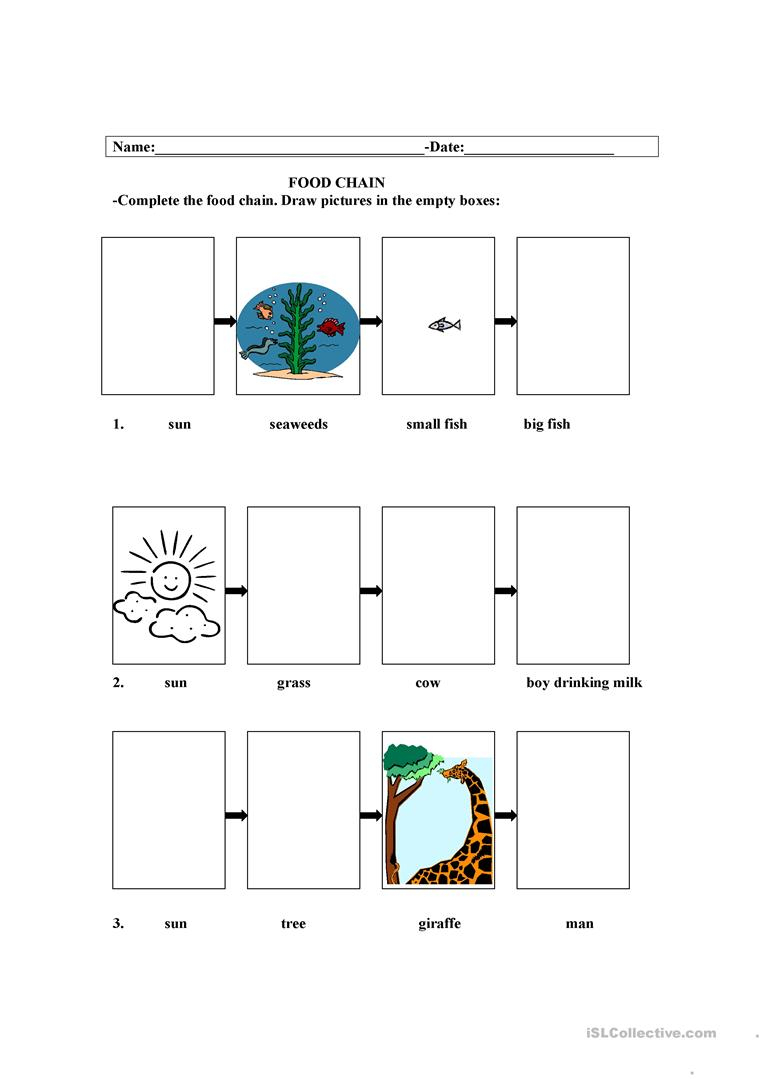 Food Chain Worksheet - Free Esl Printable Worksheets Madeteachers | Food Chain Printable Worksheets