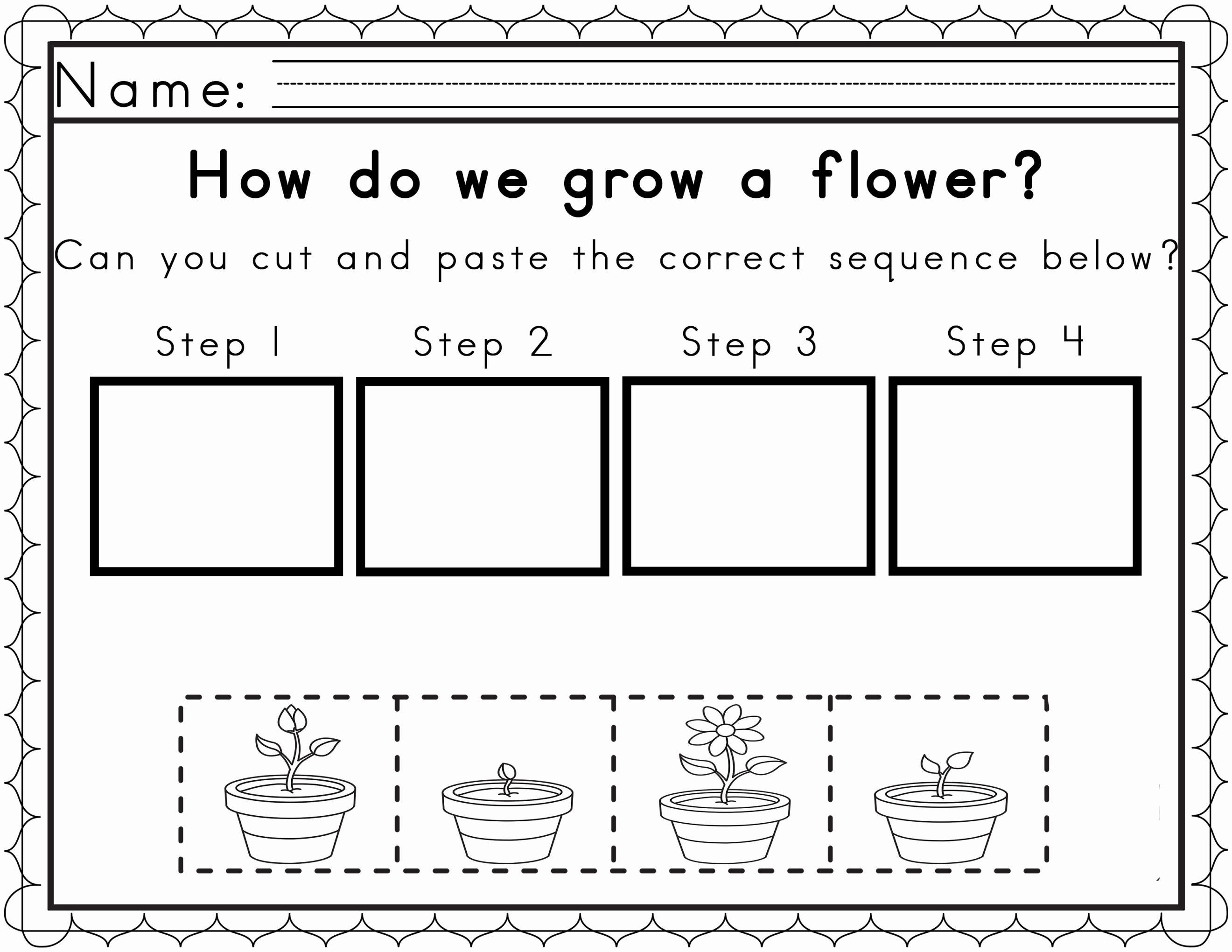Free Plant Life Cycle Worksheet Printables | Lobo Black | Free Plant Life Cycle Worksheet Printables