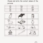 Free Printable Worksheets For Kindergarten – With Number Also | Free Printable Homework Worksheets