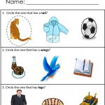 Free Printables For Receptive Language Skills! Available At | Free Printable Autism Worksheets