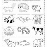 Hibernation Worksheets Regarding Free Printable Hibernation   Free | Free Printable Hibernation Worksheets