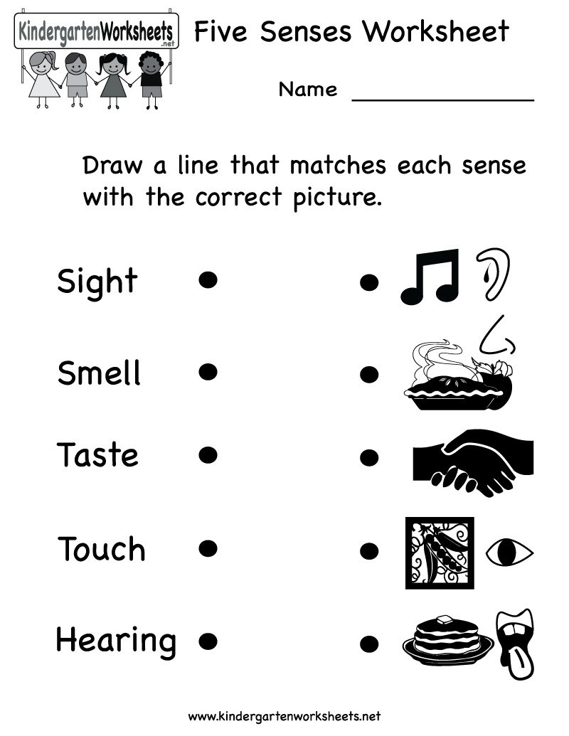 Kindergarten Five Senses Worksheet Printable | Teaching Ideas | Five | Kindergarten Science Worksheets Printable