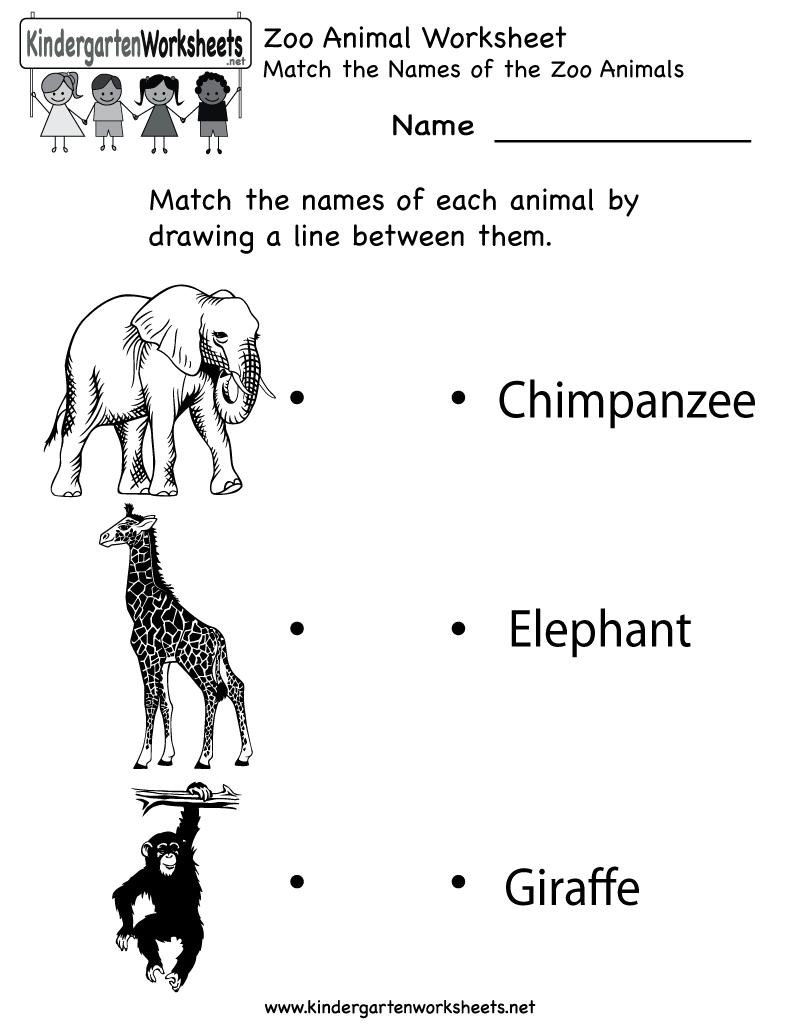 Kindergarten Zoo Animal Worksheet Printable | Worksheets (Legacy | Free Printable Zoo Worksheets