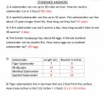Math Worksheet: Average Math Problems Context Clues Worksheets   4Th Grade Equivalent Fractions Printable Worksheets