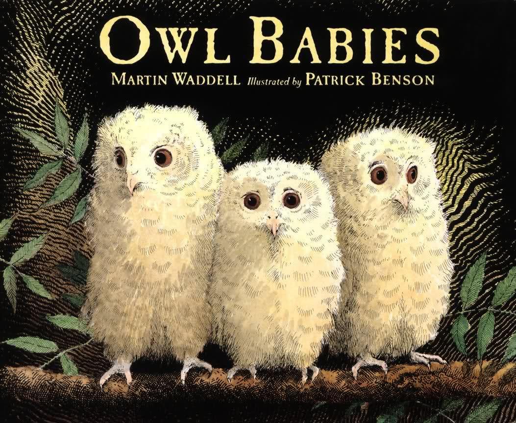 Owl Babies! Great Children's Book About Three Owlet Siblings | Owl Babies Printable Worksheets