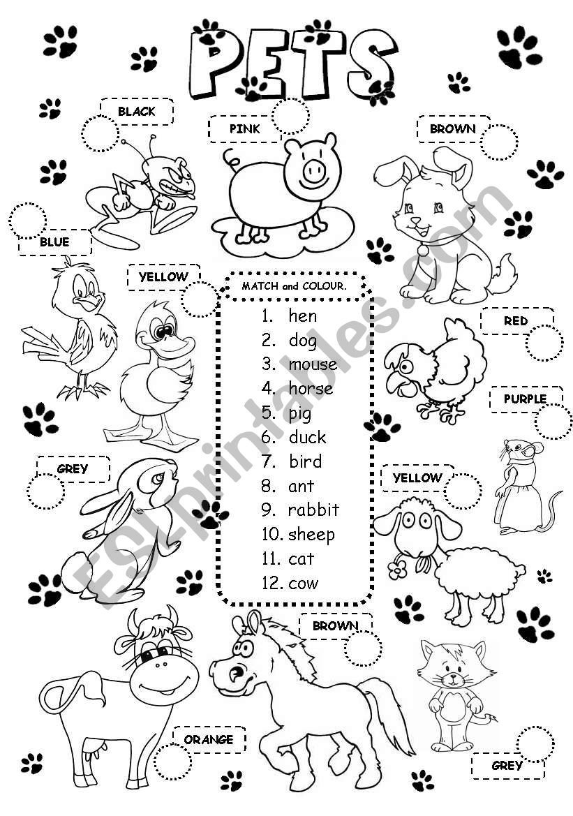 Pets - Esl Worksheetgabitza | Pets Worksheets Printables