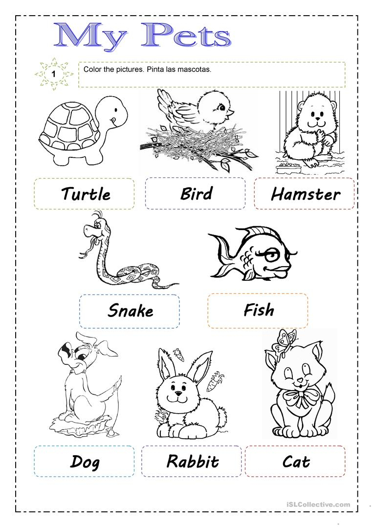 Pets Worksheet - Free Esl Printable Worksheets Madeteachers | Pets Worksheets Printables