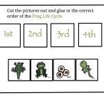 Preschool Printables: Frog Life Cycle | Pond Theme | Lifecycle Of A | Life Cycle Of A Frog Free Printable Worksheets