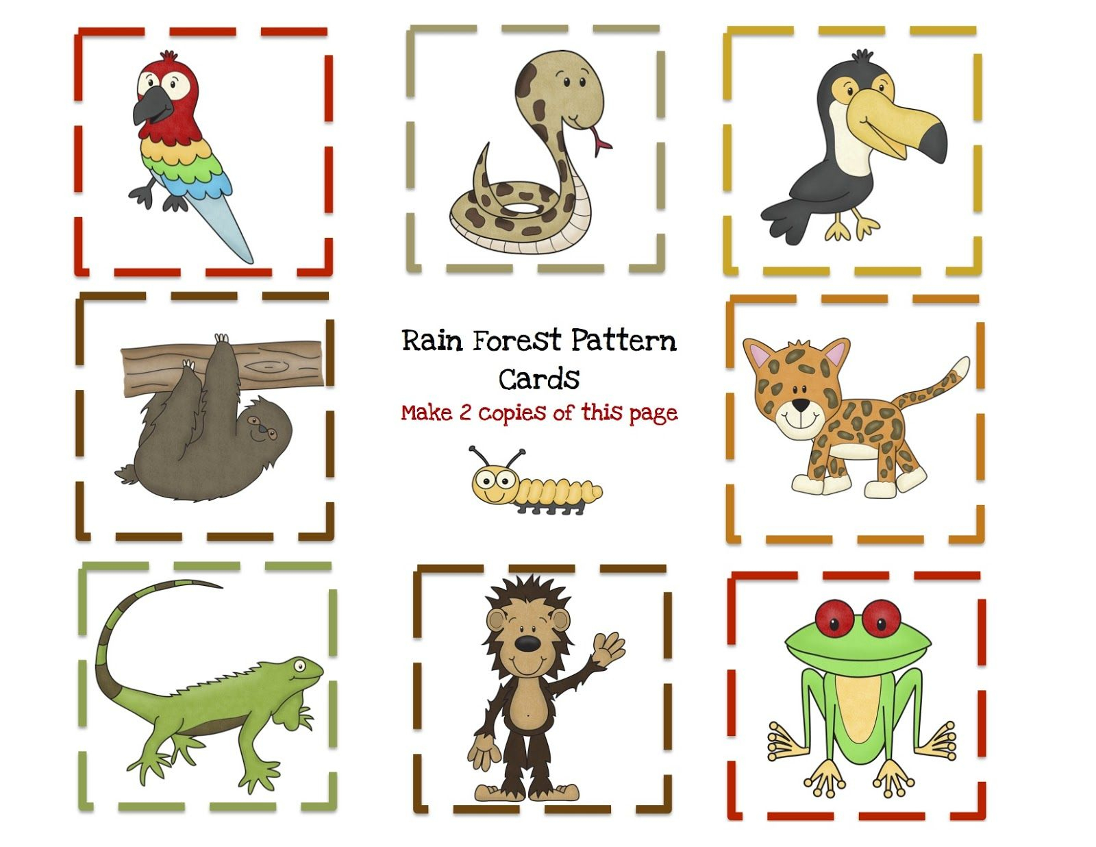 Preschool Printables: Rain Forest Animal Printable | Rain Forest | Rainforest Printable Worksheets