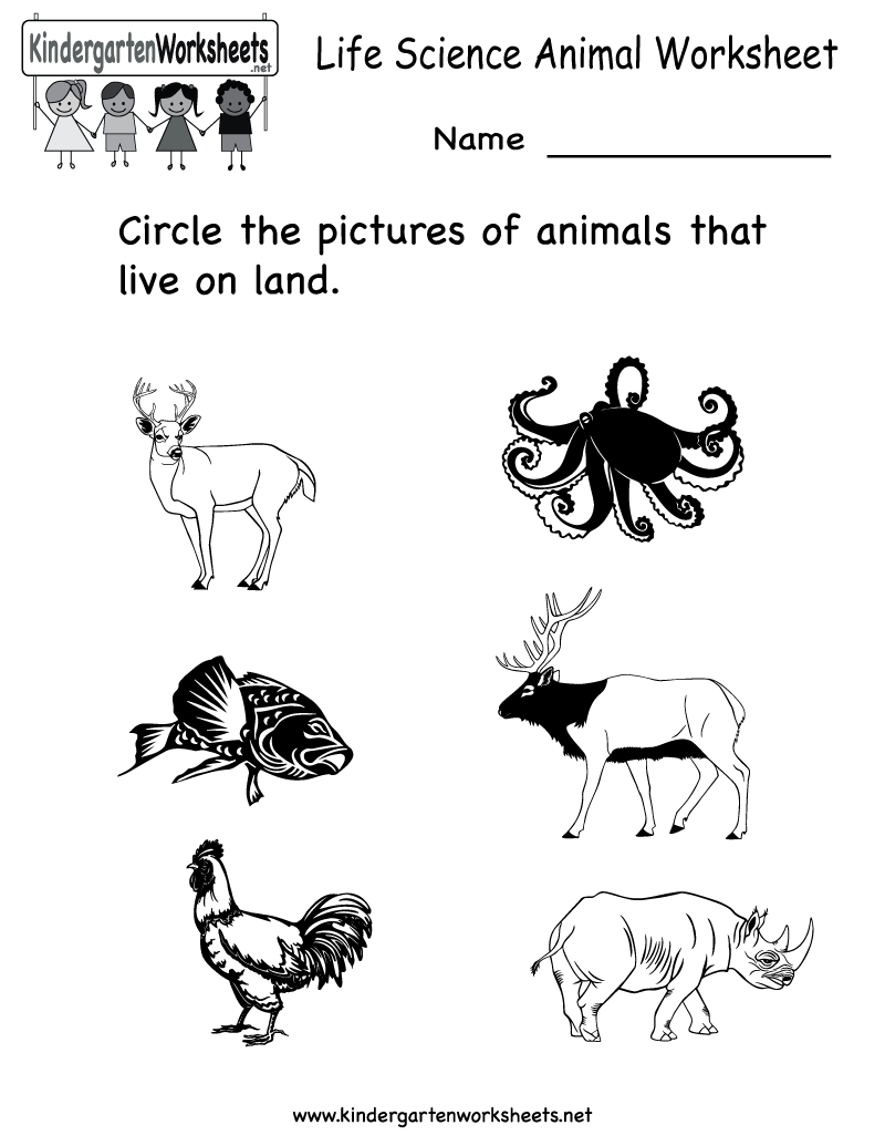 Science Printables For Kids | Life Science Animal Worksheet - Free | Kindergarten Science Worksheets Printable