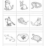 Stempelkaart | Pets Preschool Theme | Kindergarten Worksheets | Pets Worksheets Printables