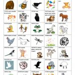 What Does The Fox Say   Animal Sounds Worksheet   Free Esl Printable | Animal Sounds Printable Worksheets