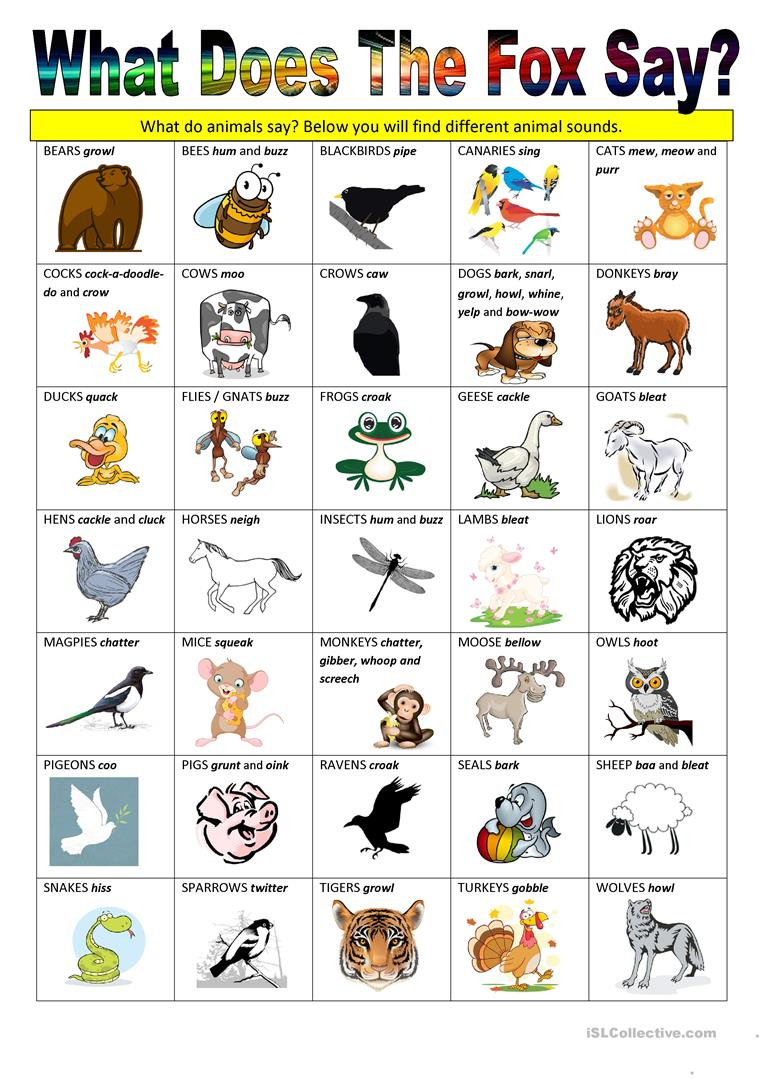 What Does The Fox Say - Animal Sounds Worksheet - Free Esl Printable | Animal Sounds Printable Worksheets