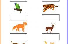 Animal Sounds Printable Worksheets